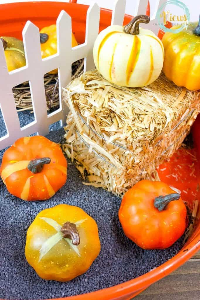 pumpkin_sensory_bin__XgfWW