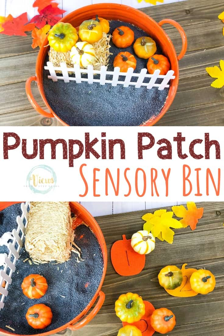 Pumpkin Sensory Bin: Picking, Counting and Exploring