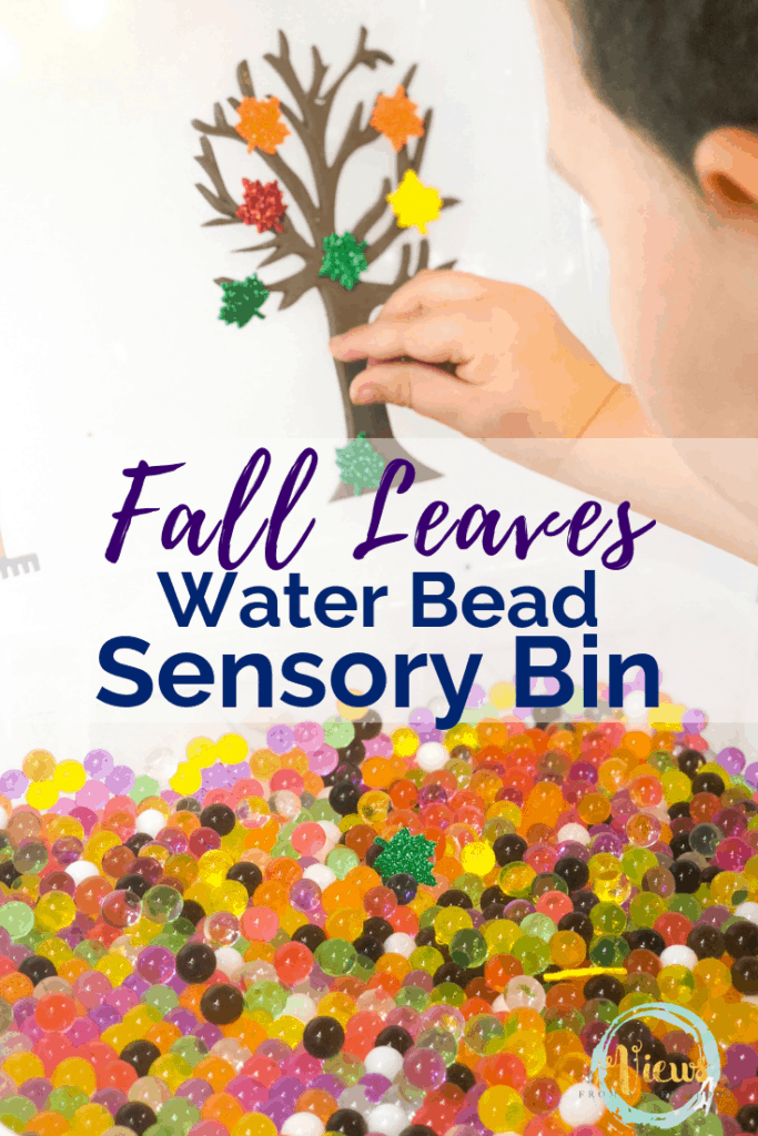 fall leaves sensory bin pin 3