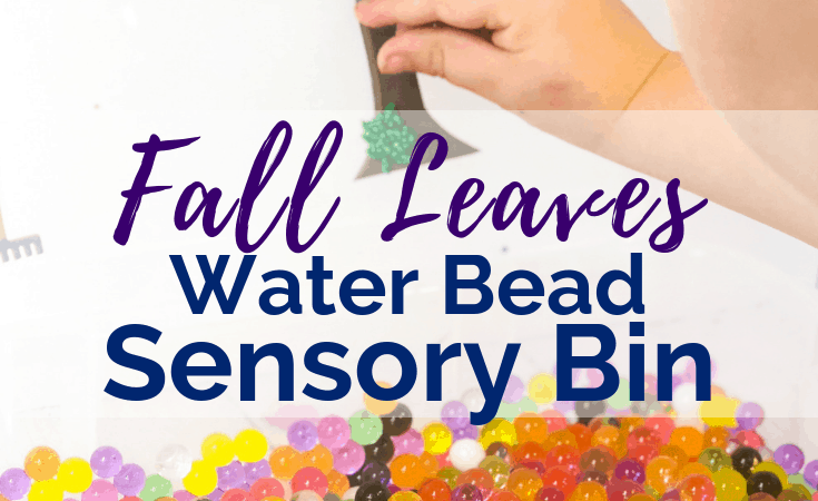 Fall Leaves Sensory Bin Hidden in Water Beads