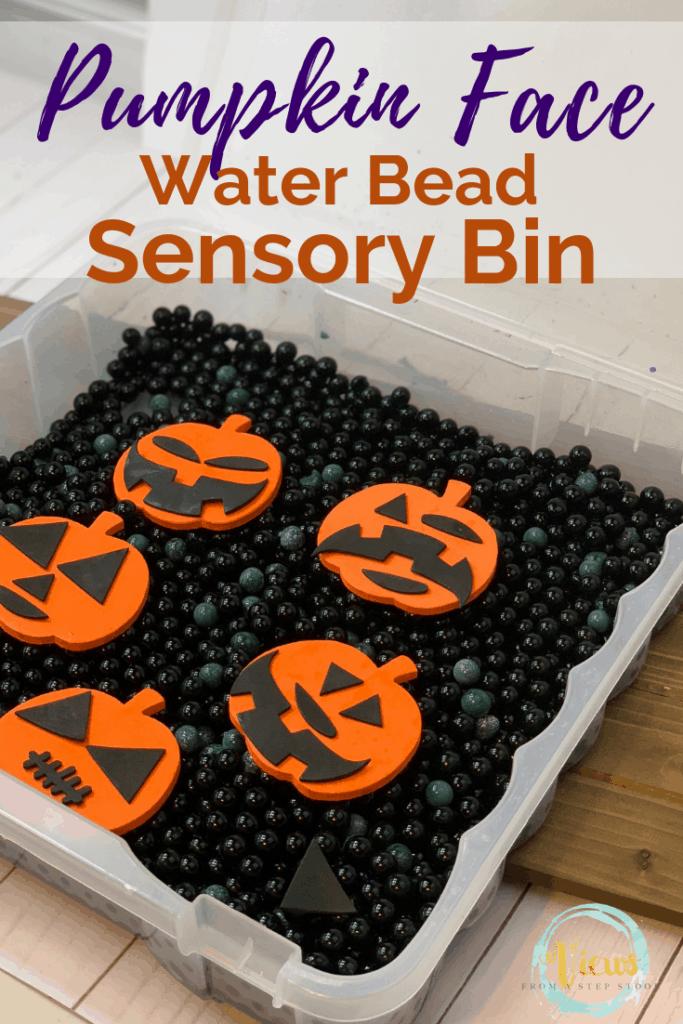 jack o lantern sensory bin pin 3