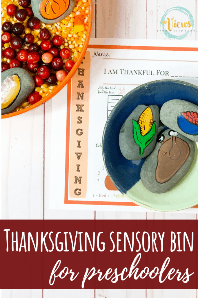 thanksgiving sensory bin preschoolers pin