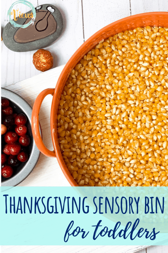 thanksgiving sensory bin toddlers pin