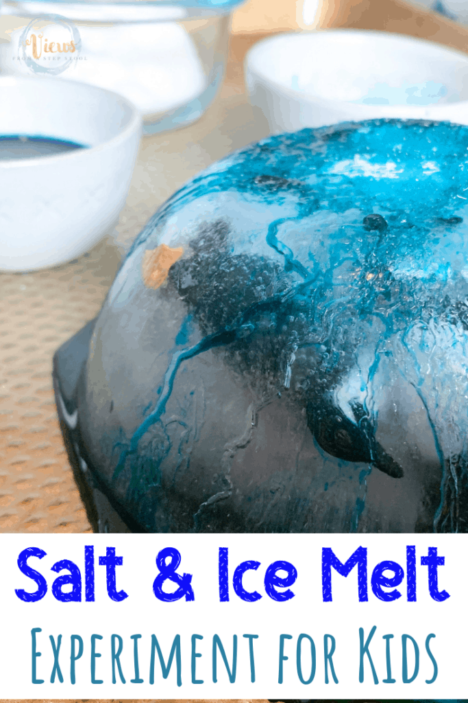 Salt And Ice Experiment For Kids Save The Frozen Penguins Views From A Step Stool