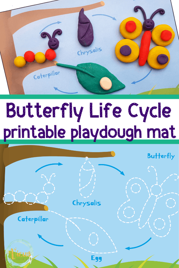 This butterfly playdough mat will show your little one all about the life cycle of the butterfly. It's educational and fun!