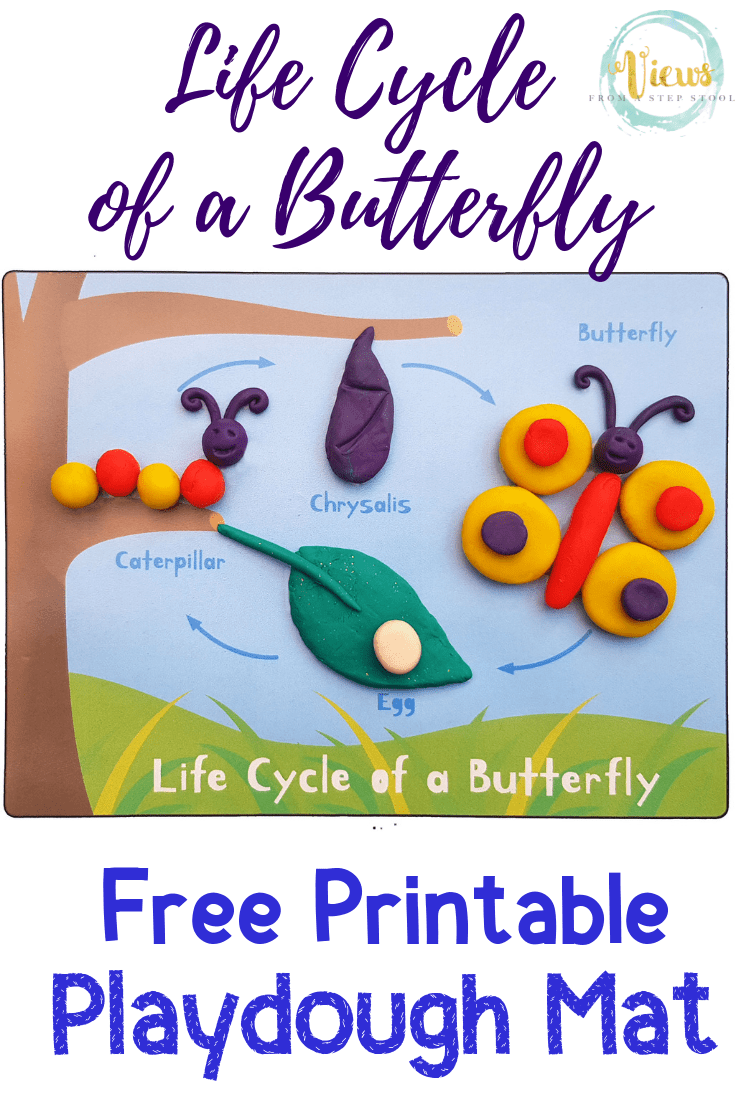 Life Cycle of a Butterfly Playdough Mat – Free Printable
