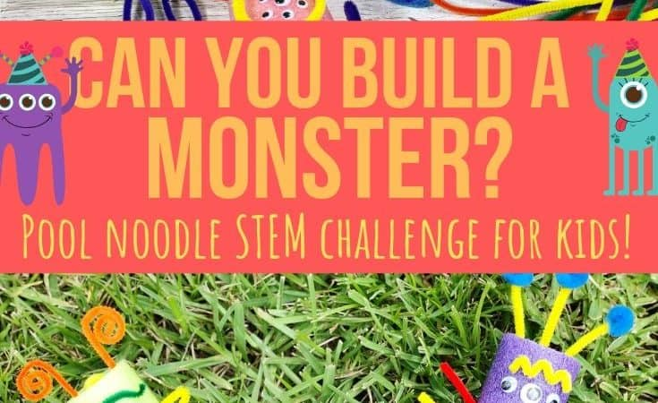 Build a Monster STEM Challenge for Kids with Pool Noodles