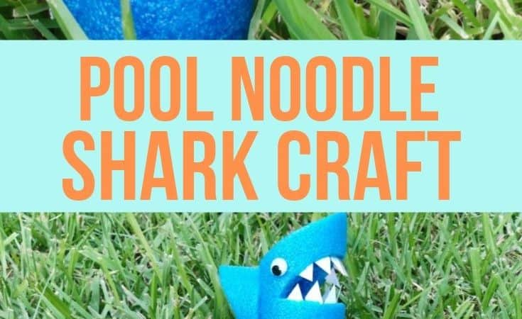 Pool Noodle Shark Craft for Kids