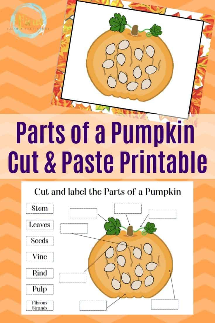Parts of a Pumpkin Printable for Kids