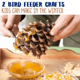 2 Fun Bird Feeder Crafts for Kids to Make in the Winter
