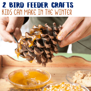 2 Fun Bird Feeder Crafts for Kids to Make in the Winter