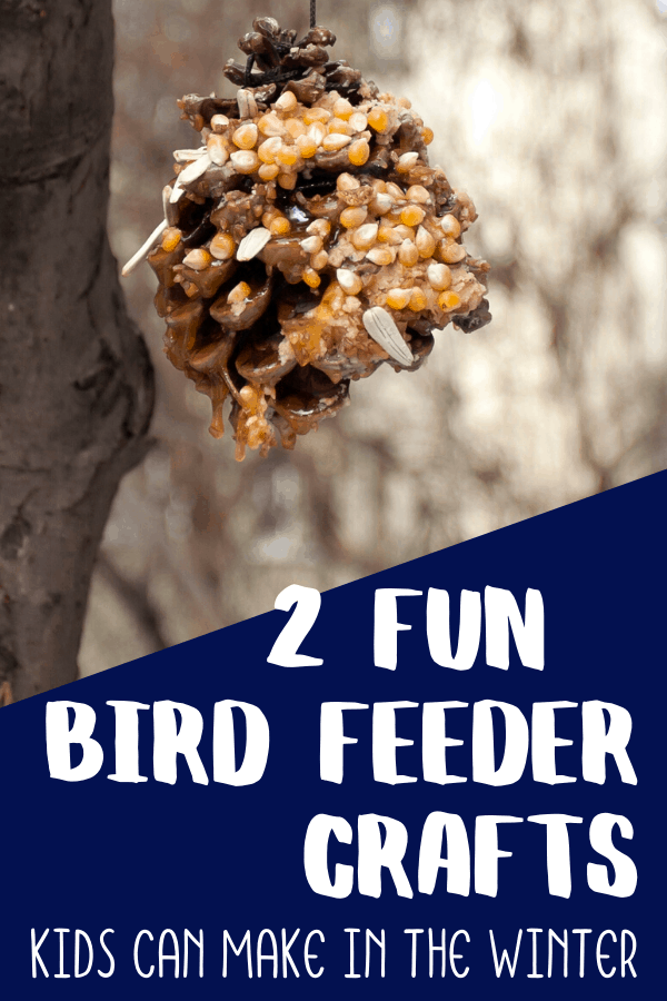 pinecone bird feeder crafts for kids