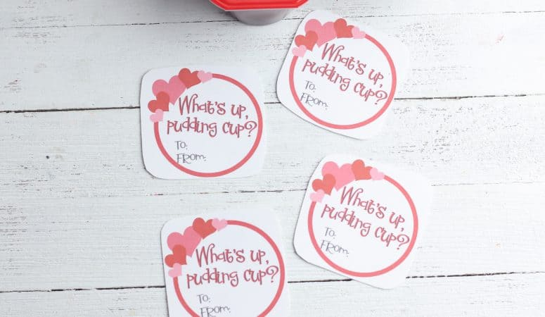Pudding Valentines with Free Printable Cards