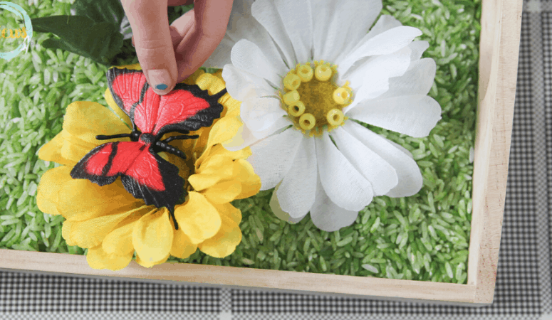 Butterfly Sensory Bin with Colored Rice