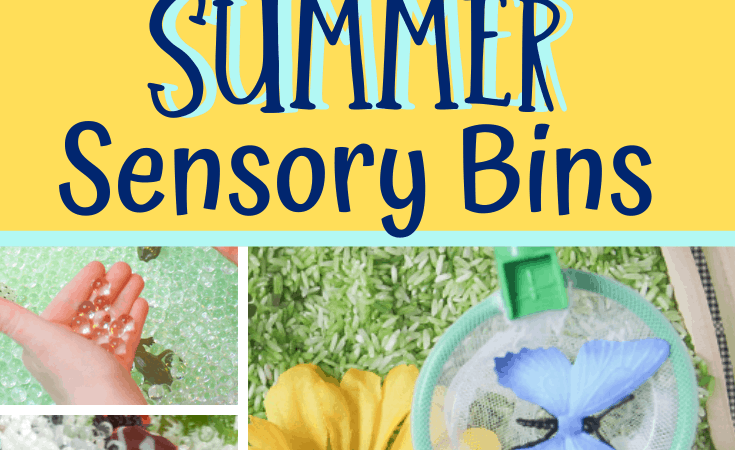 10 Summer Sensory Bins Kids will Love